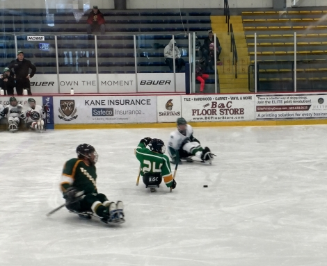 NESHL Sled Hockey Tournament